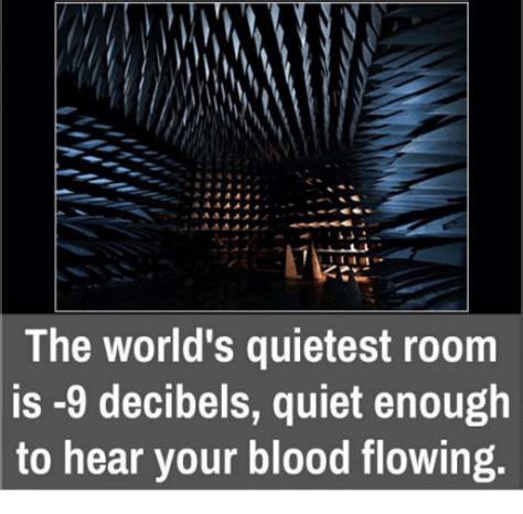 Worlds Quietest Room by Search Swaggin Memes On Me Me