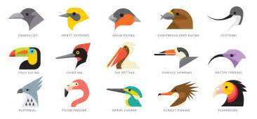 Essay On Different Types Of Birds In by Pecking Order Audubon