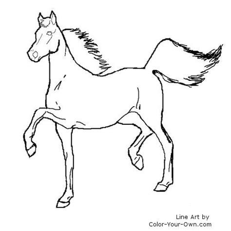 coloring pages of quarter horses qurter horses free colouring pages