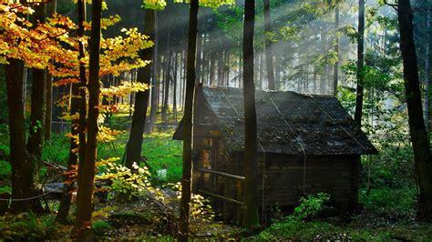Kleine Tiny Häuser by Die 72 Besten Herbstliche Natur Sch 246 Ne Hintergrundbilder