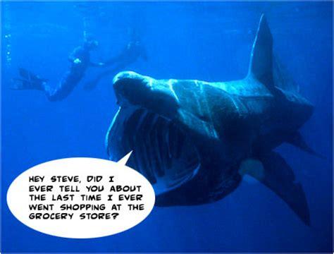 Baby Room Games - i mockery com basky the basking shark s worst life experience