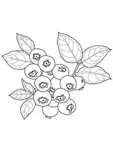 blueberry coloring page supercoloringcom
