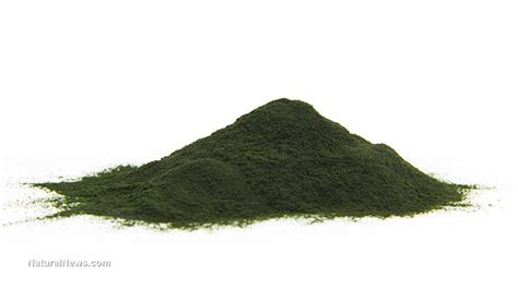 Does Spirulina Detox Heavy Metals by Don T Let Heavy Metals Weigh You You Can Detox With