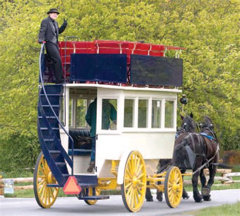 buggy decke deck carriage tours birds of