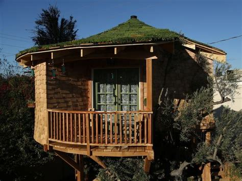 Treehouse Masters Luck O The Cottage treehouse masters explores creations around country