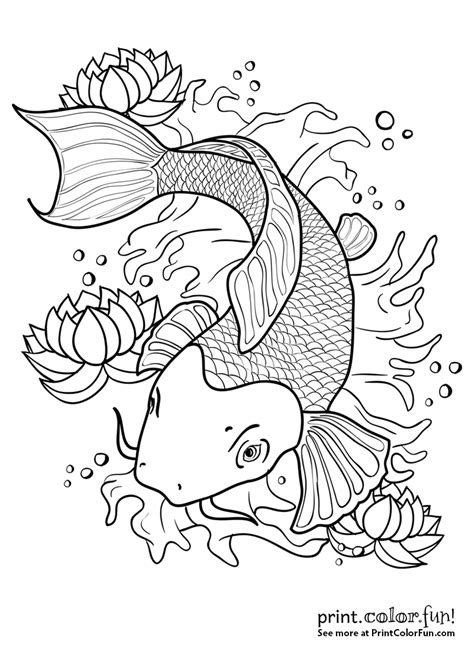 printable coloring pages koi fish koi fish in a pond coloring page print color fun