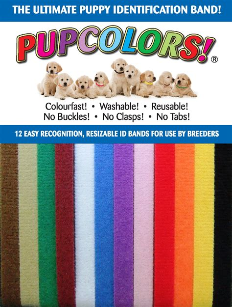 id collar pupcolors ultimate puppy identification band puppy id collars