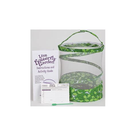 Butterfly Garden Kit by Live Butterfly Garden Kit For Raising Caterpillars