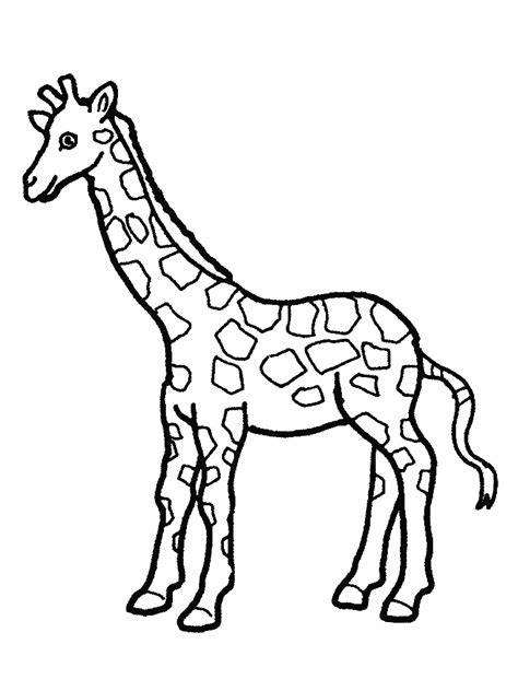 for printable coloring pages giraffes coloring pages free coloring
