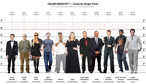 hollywood actress height in cm celeb heights celebrity height chart maker