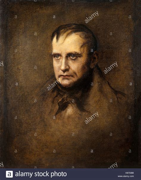 jacques françois simon napoleon bonaparte portrait painting stock photos