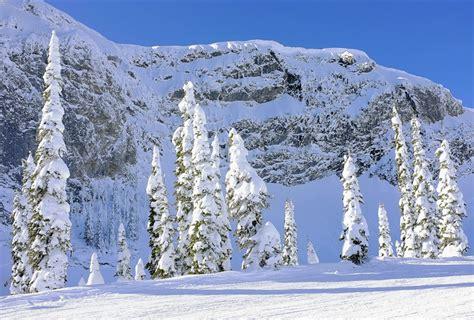 snow images snow shroud fernie fernie canada north america transient light
