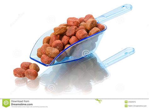 the scoop on pet food digestion dog food in a scoop stock image image of scoop closeup