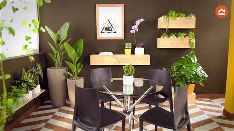 decora tu casa  plantas de interior youtube