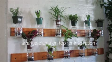 Diy Mason Jar Herb Garden 171 Inhabitat Green Design Jar Herb Garden Wall