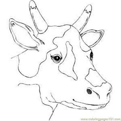 printable animal heads spotty cow head printable coloring page for kids and adults
