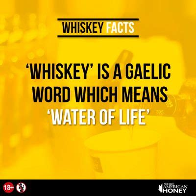 8 Reasons Why Are Cool by 8 Cool Reasons Why You Should Drink Whiskey