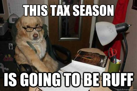 Tax Meme - tax quotes and jokes for tax season income tax cartoons