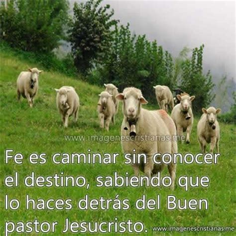 imagenes cristianas de ovejas imagenes cristianas de fe im 193 genes cristianas gratis