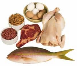 alimenti che contengono lisina proteine magre