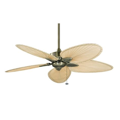 fanimation fp7500 windpointe ceiling fan lighting