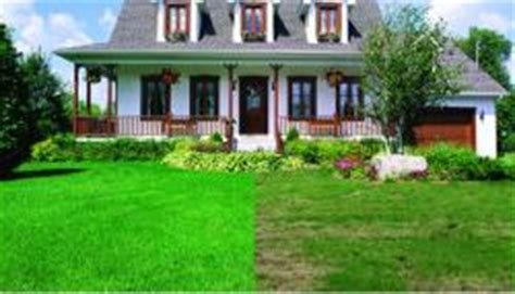 power seeding st charles mo lawn care service st