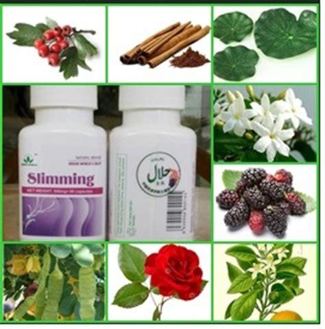 Pelangsing Green Tea green tea herbal pelangsing badan slimming capsule