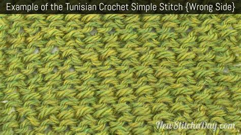 tunisian crochet complete and easy guide to awesome tunisian crochet patterns and projects tunisian crochet book crochet stitches books how to tunisian crochet the tunisian simple stitch
