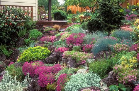 Flowers For Rock Gardens Steep Hillside Landscaping Search Landscaping Ideas House Deck Alpine