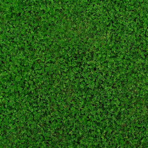 Simple Floor Plan Samples by 30 Grass Textures Tilable Tileable Grass Clover