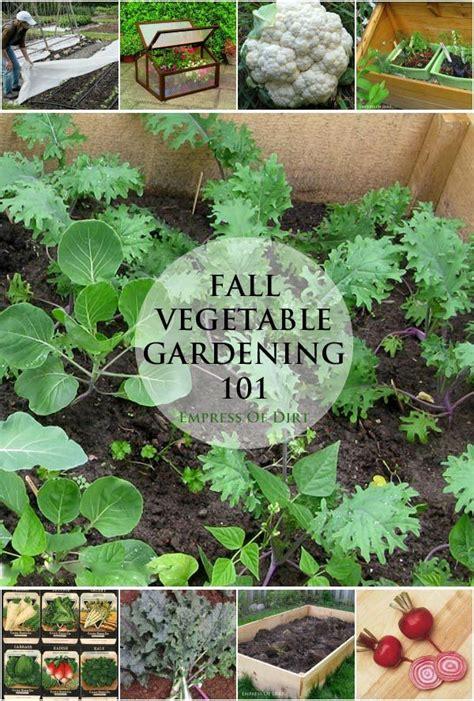 Best Fall Garden Vegetables 39 Best Fall Gardening Images On Gardening