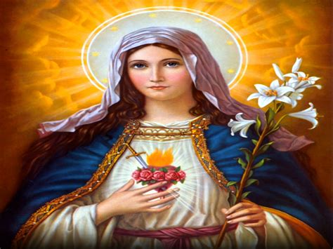 immaculate heart of mary holy mass images immaculate heart of mary