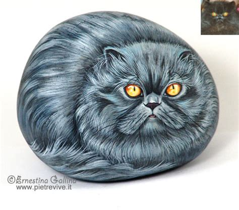 ricerca sui persiani painted rock cat portraits on