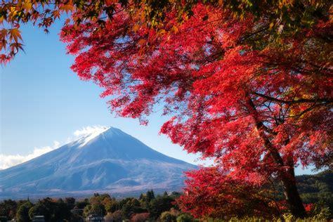 Day 6 A Scenic Detour by Beautiful Day Mt Fuji Taken From Lake Kawaguchi This