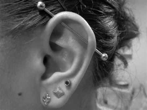 top ear bar 10 most popular piercings
