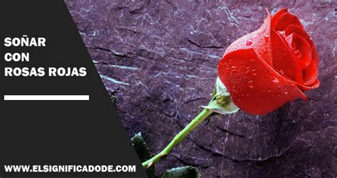 imagenes de rosas verdaderas so 241 ar con rosas rojas significado de los sue 241 os