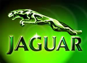 Jaguar Cars Logo Robert Corley Creative Digital Illustration Jaguar Logo
