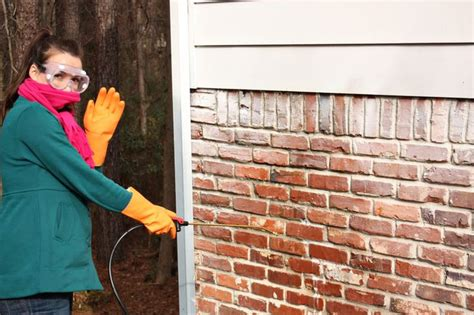 removing paint from brick exterior pin by cloud pire on 3520