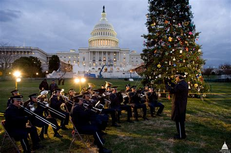 capitol tree lighting capitol tree architect of the capitol united
