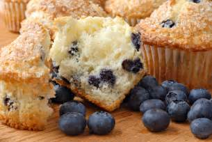 blueberry quot muffins quot recipe dishmaps