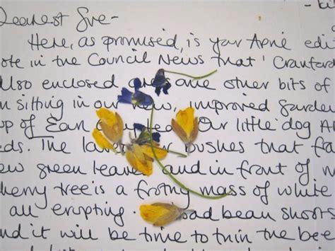 appreciation letter to niece letter writing 101 susan branch