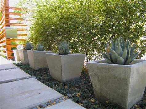pots   landscape modern landscape los angeles