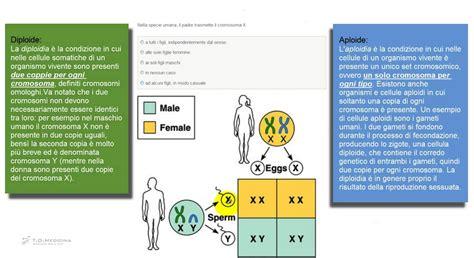 test ingresso biologia simulazione 1 trasmissione cromosoma x quesiti biologia test