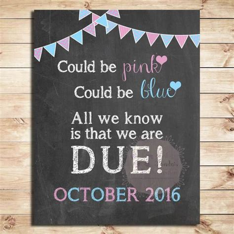 pregnancy announcement sign   pink   blue