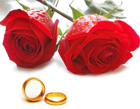 Ihre Hochheit by Hochzeit