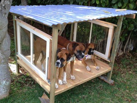 how to dogs to outside 25 best ideas about outdoor runs on run yard diy yard and