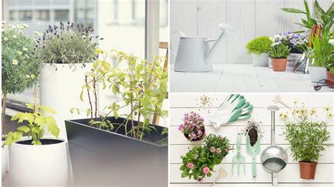 arredare una terrazza con piante come arredare una terrazza con piante great come arredare