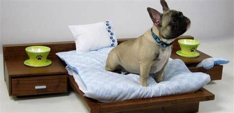 camas para perros pequeños nuevas camas de dise 241 o para perros