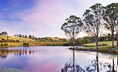 Narellan Botanical Gardens Gallery Australian Botanic Garden Mount Annan Attracts Record Visitors Camden Narellan