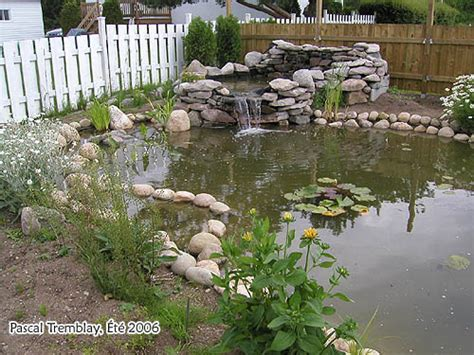 Building A Backyard Garden by Garden Pond Landscaping Design Ideas Build A Japanese